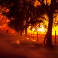 TEASE 02 cnnphotos deadly wildfires RESTRICTED
