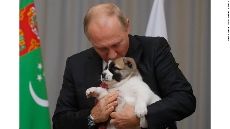 Putin gets a new puppy for his birthday