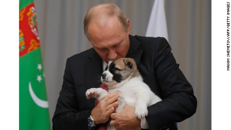 Russian President Vladimir Putin kisses a Turkmen shepherd dog, locally known as Alabai, received by Turkmenistan's President Gurbanguly Berdimuhamedov during a meeting in Sochi, on October 11, 2017.