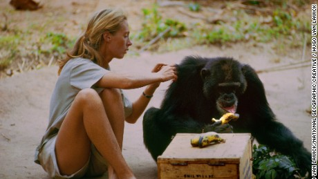 Jane Goodall in 'Jane'