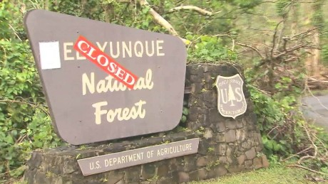 el yunque national forest obliterated martin savidge_00005702
