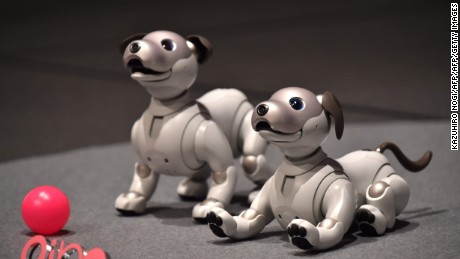 "Sony's latest entertainment robots ""aibo"" are displayed during a press preview at the company's headquarters in Tokyo on November 1, 2017.    Japanese electronics giant Sony is marking the year of the dog by bringing back to life its robot canine -- packed with artificial intelligence and internet capability. / AFP PHOTO / Kazuhiro NOGIKAZUHIRO NOGI/AFP/Getty Images"
