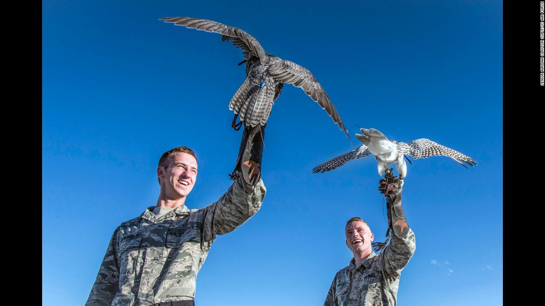 Air Force cadets Shawn Weathersby, left, and James Barney prepare to release their falcons at the Air Force Academy in Colorado Springs, Colorado, on Thursday, October 12. The falcon is the academy's mascot, and nine cadets make up the academy's falconry team.