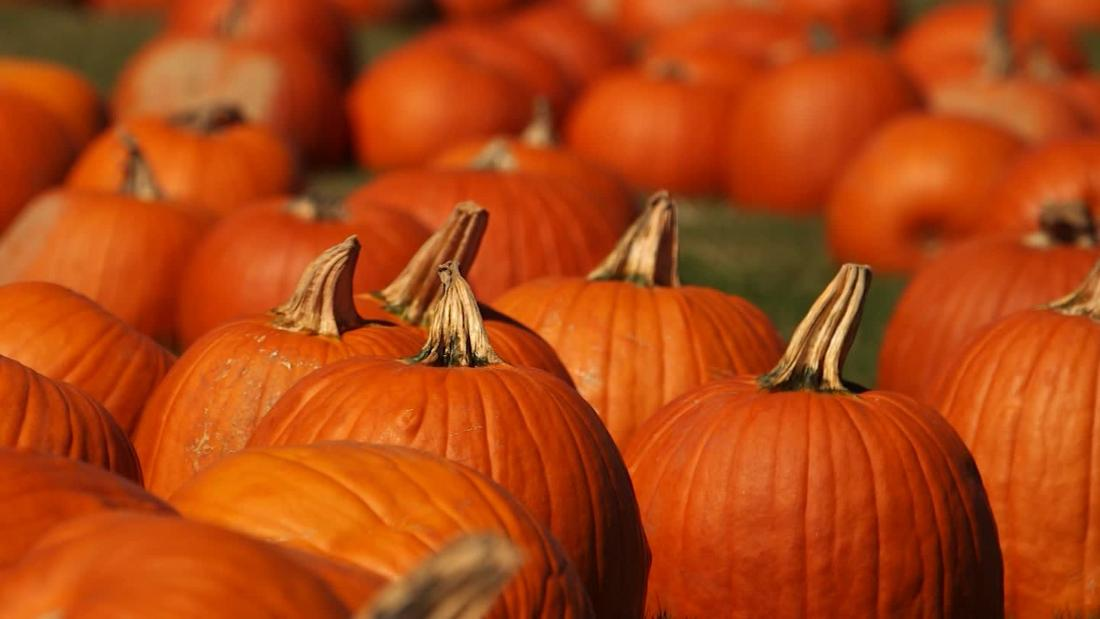 6 surprising health benefits of pumpkins