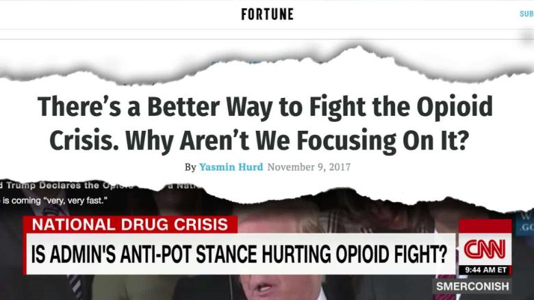 Is admin's anti-pot stance hurting opioid fight? _00000000