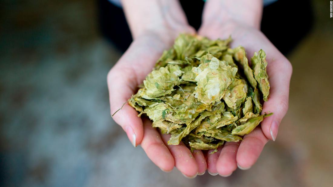 The wort is boiled and hops are added. Different hops are added at various intervals for bittering, flavor and aroma, and to balance the sweetness of the malt.<br />