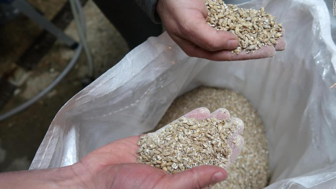 While bread replaces a third of the barley malt, malt is still required as it has naturally occurring enzymes that convert the starches in the grain into simple sugars.  <br /><br />Toast Ale uses crumbed bread, Pale Malt, Caramalt, Munich Malt and oat husks.