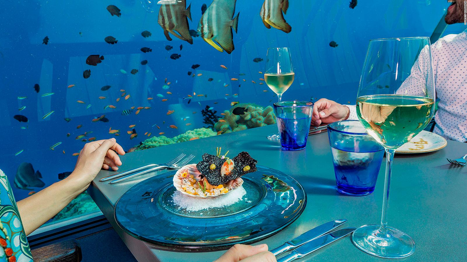 World s largest all glass underwater restaurant ecommcoupons for Hotel conrad restaurante bajo el mar