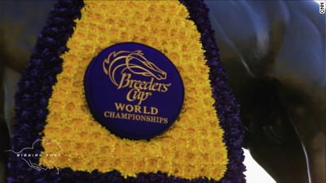 November: The Breeders' Cup