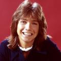 pwl david cassidy RESTRICTED