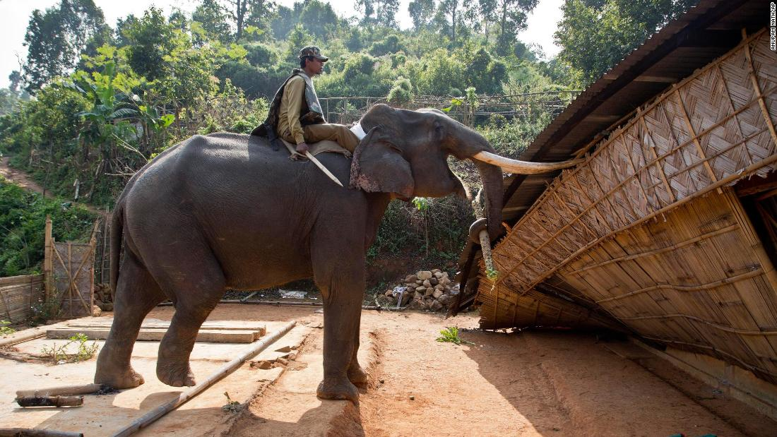 An elephant is used to demolish a house Monday, November 27, during an eviction drive inside the Amchang Wildlife Sanctuary, on the outskirts of Gauhati, India. Police were trying to evict hundreds of people living illegally in the protected forest area. They used bulldozers and the elephants in a show of force, and some forest dwellers responded by hurling rocks.
