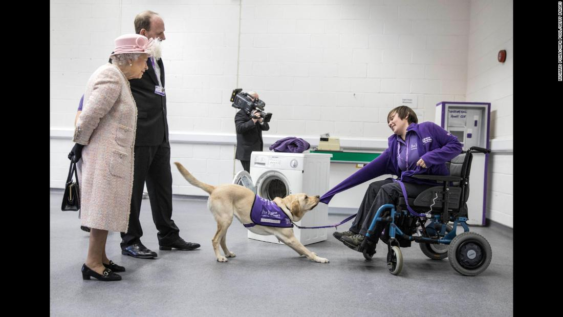 Britain's Queen Elizabeth II, touring the Canine Partners charity on Thursday, November 30, watches Hettie the dog demonstrate how she can help undress a disabled owner.