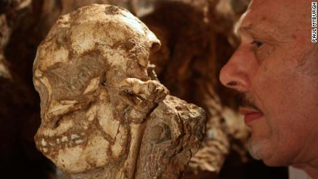 Researchers unveil 3.6 million-year-old rare skeleton of human ancestor