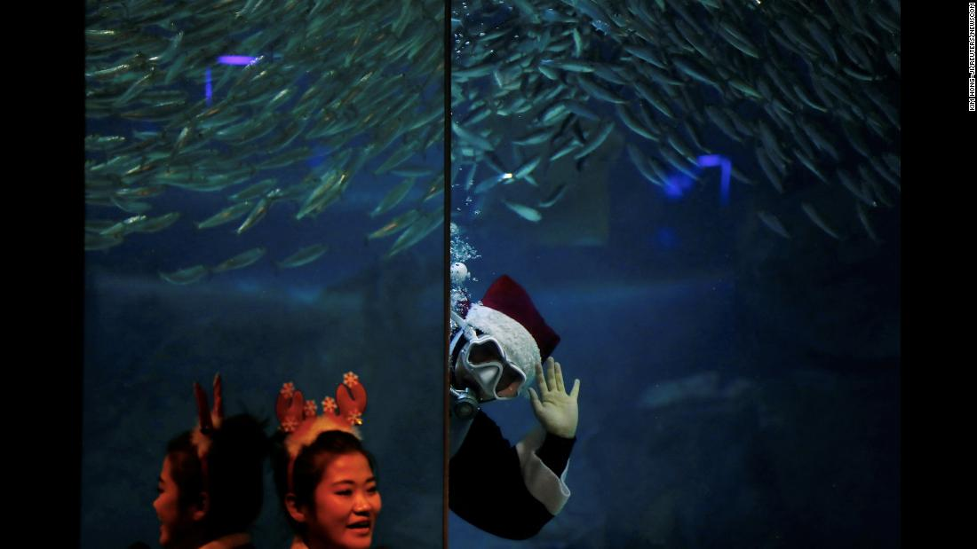A diver in a Santa Claus costume swims with sardines Sunday, December 10, at the Coex Aquarium in Seoul, South Korea.