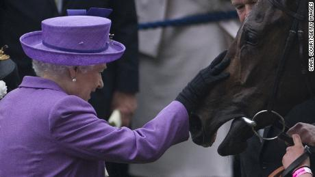 The Queen with her horse, Estimate, who won the 2013 Gold Cup at Royal Ascot.