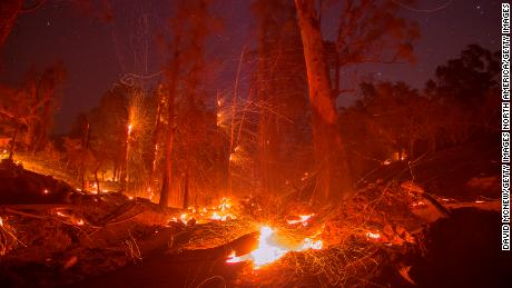 A strong wind blows embers from smoldering trees at the Thomas Fire on December 16, 2017 in Montecito, California. The National Weather Service has issued red flag warnings of dangerous fire weather in Southern California for the duration of the weekend. Prior to the weekend,