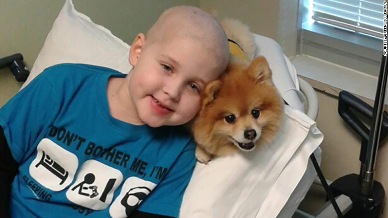 Meet Swoosh, a cancer therapy dog