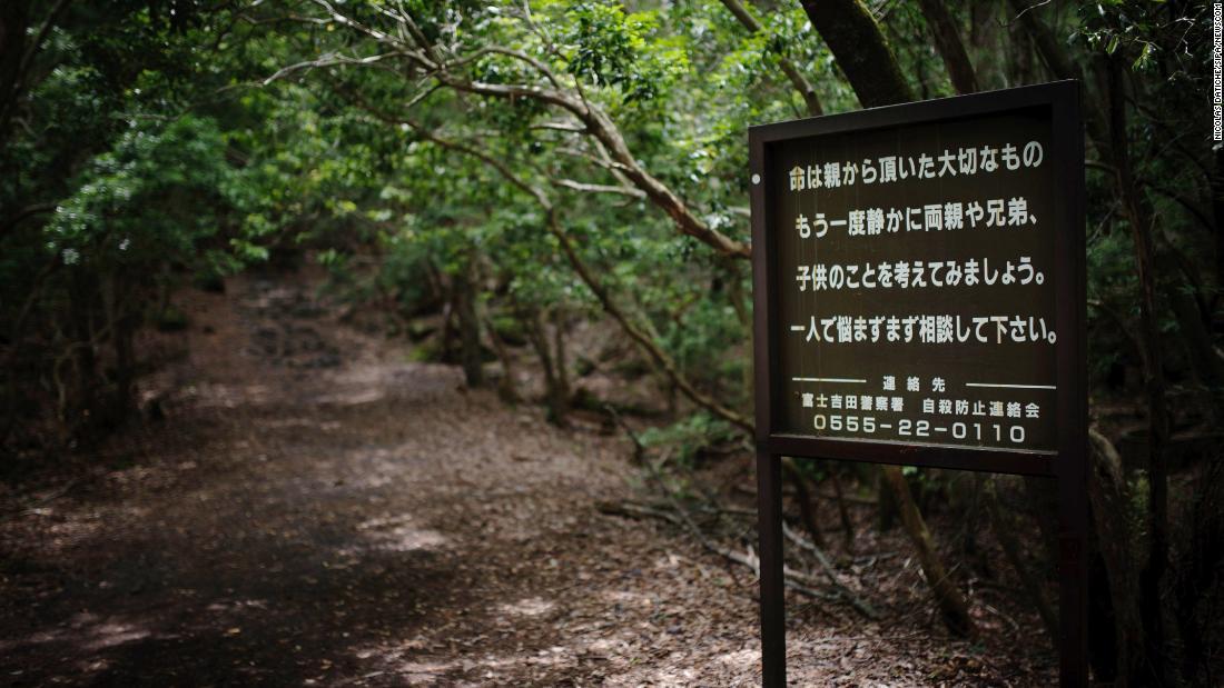 Inside Japans suicide forest CNN
