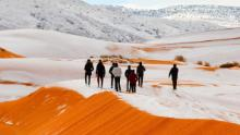 Mandatory Credit: Photo by Geoff Robinson Photography/REX/Shutterstock (9309883af)