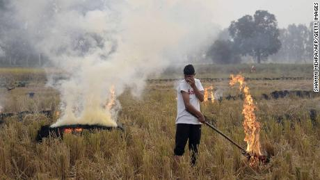 An Indian farmer burns paddy stubble in a field on the outskirts of Jalandhar. Cooler winter air traps particulates close to the ground, preventing them from dispersing.