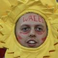 rugby six nations wales fan