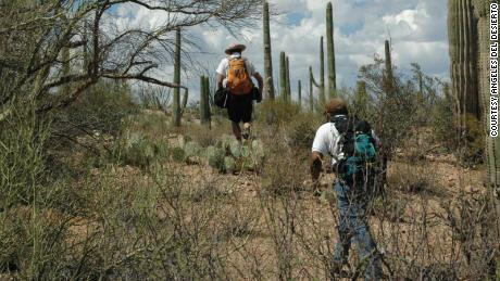 Volunteers, like these ones from Angeles Del Desierto or Desert Angels, are a key part of the search for missing migrants. But nongovernmental groups can't upload DNA to the FBI's central database and must use a separate, private system.