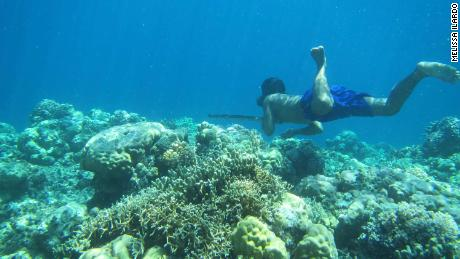 Diving deep could be in a 'sea nomad's' DNA