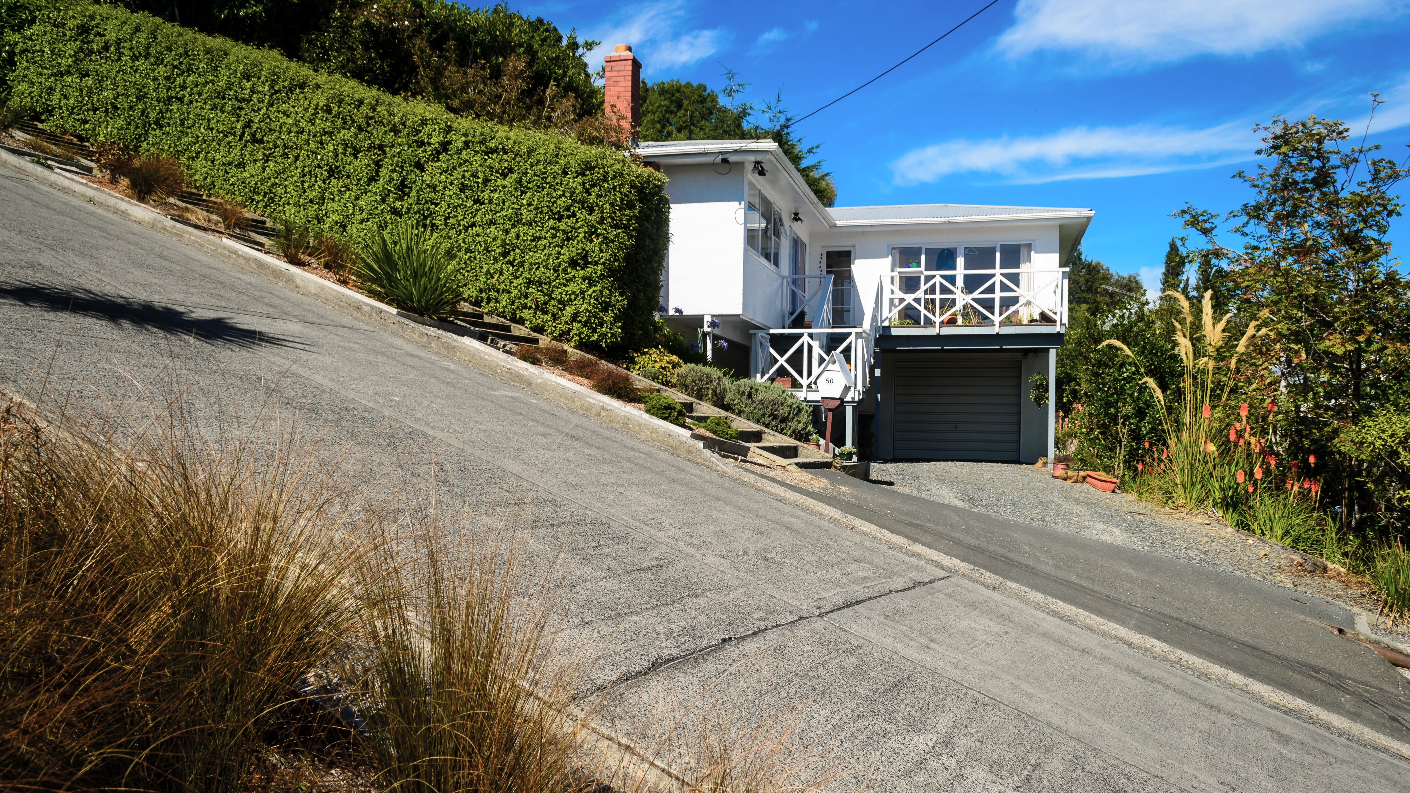 9 best things to do in Dunedin, New Zealand | CNN Travel