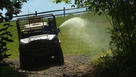 Summer camps face lethal mites and mosquitoes