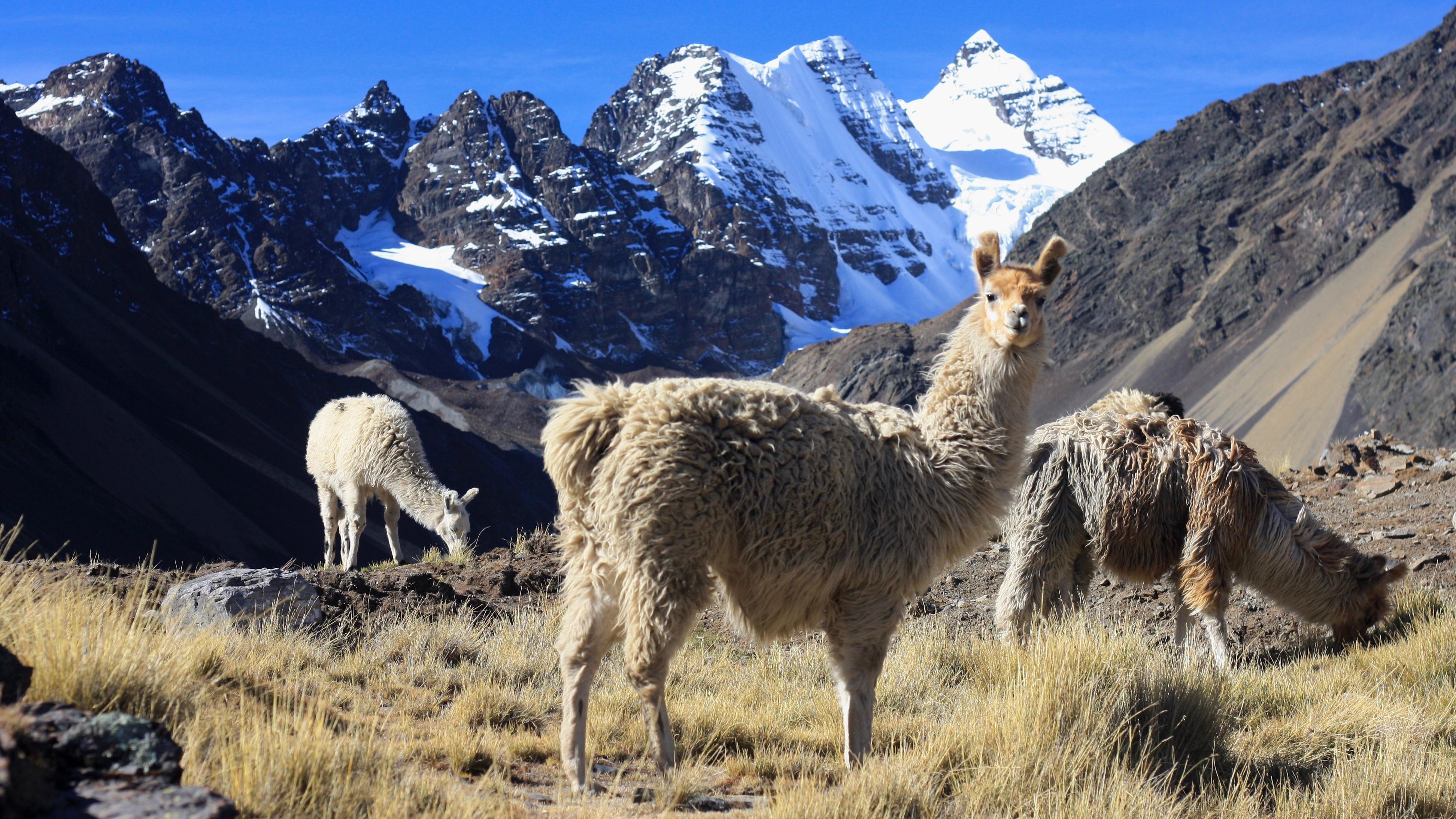 Bolivia S Cordillera Real Uncrowded Alternative To Inca Trail Cnn Travel