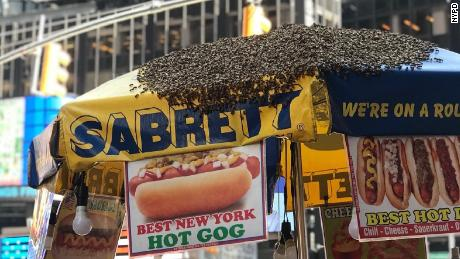 Times Square Abuzz As Hundreds Of Bees Swarm Hot Dog Cart