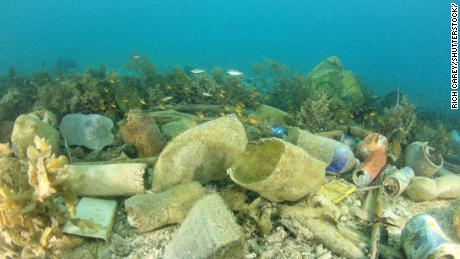 Microplastics found in human stools, research finds