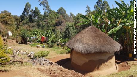 A rural homestead near Iten, western  Kenya.
