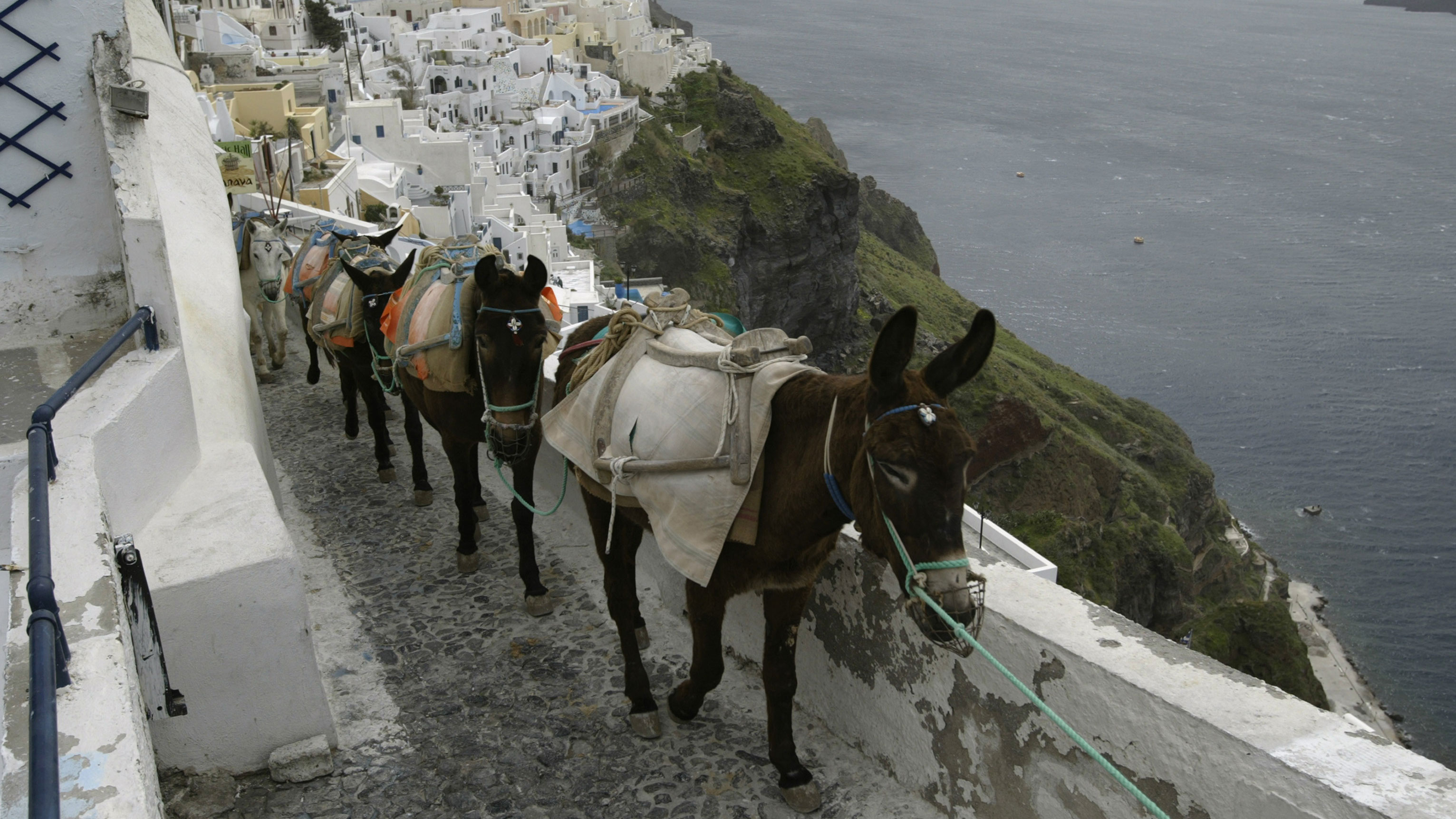Santorini tourists asked to walk up instead of riding