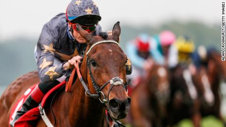 Racehorse The CliffsofMoher Put Down After Suffering Fractured Shoulder in Melbourne Cup