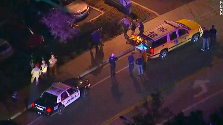 Gunman kills 12 in California bar
