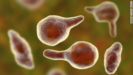 Superbugs & # 39; A global threat such as climate change and warfare & # 39;