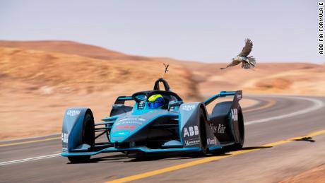 Formula E car vs. the fastest animal