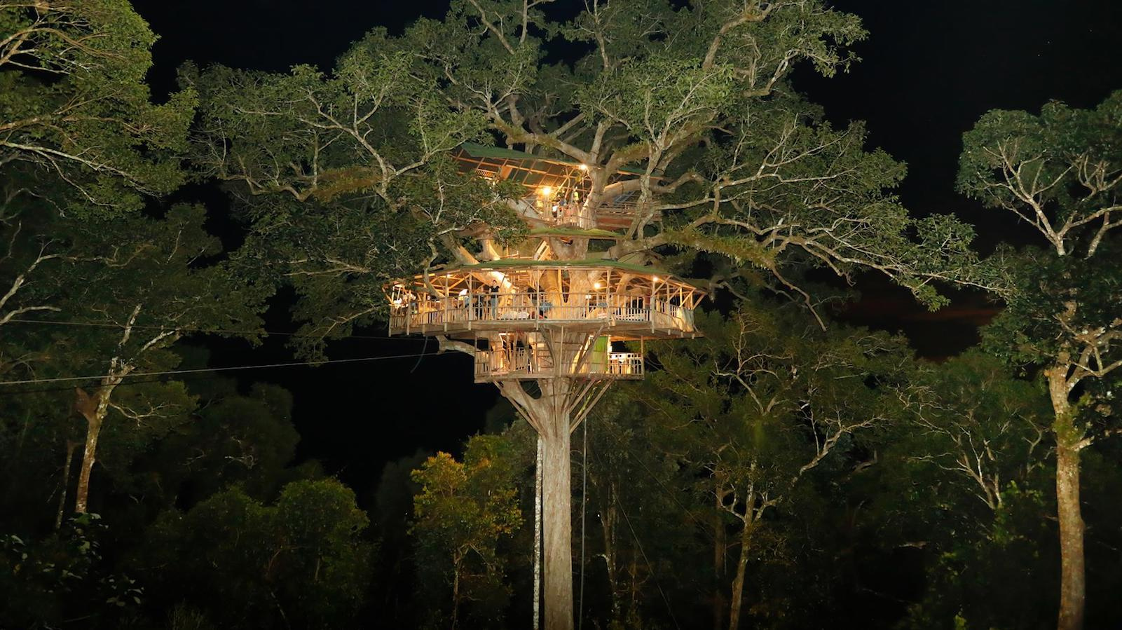 Picture of: Gibbon Experience In Laos Stay In The World S Tallest Treehouses Cnn Travel