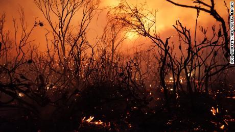 Australia está sofocando a través del calor récord. Y lo peor está por venir