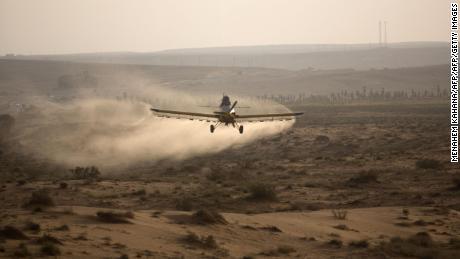 A light aircraft sprays pesticides on a hill in the Negev desert near the Egyptian border.