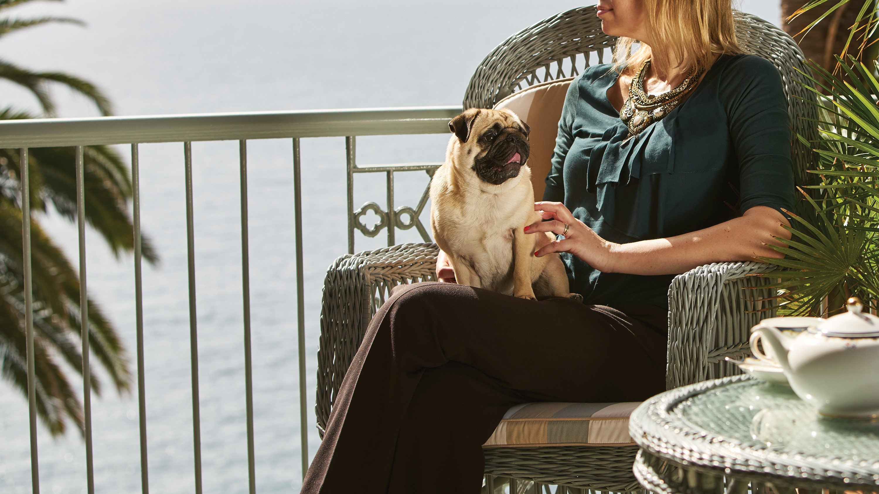 Rosewood Options Gentle Massage Groomer for Small Animals