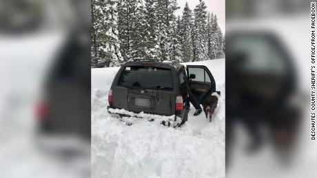 Jeremy Taylor and his dog Ally were stuck in the snow for five days and survived on taco sauce according to the Deschutes County Sheriff's Office in Bend Oregon