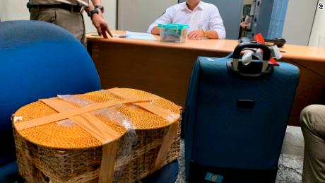 Indonesian officials sit in a room with the rattan basket allegedly used to smuggle a drugged orangutan out of the island.