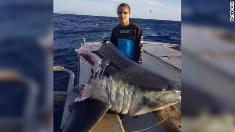 Fisherman catches giant shark -- just as something even bigger takes a bite - CNN