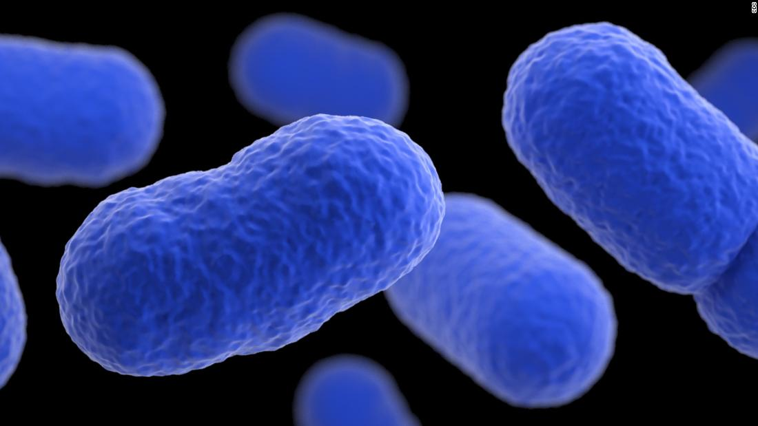 Listeria: What is it, and what's the risk? - CNN