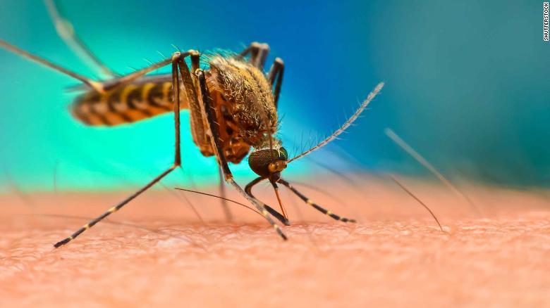 Philippines tuyên bố cảnh báo quốc gia sau khi 456 người chết vì sốt xuất huyết