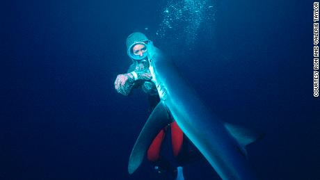 She filmed sharks for 'Jaws' -- then she dedicated her life to protecting them
