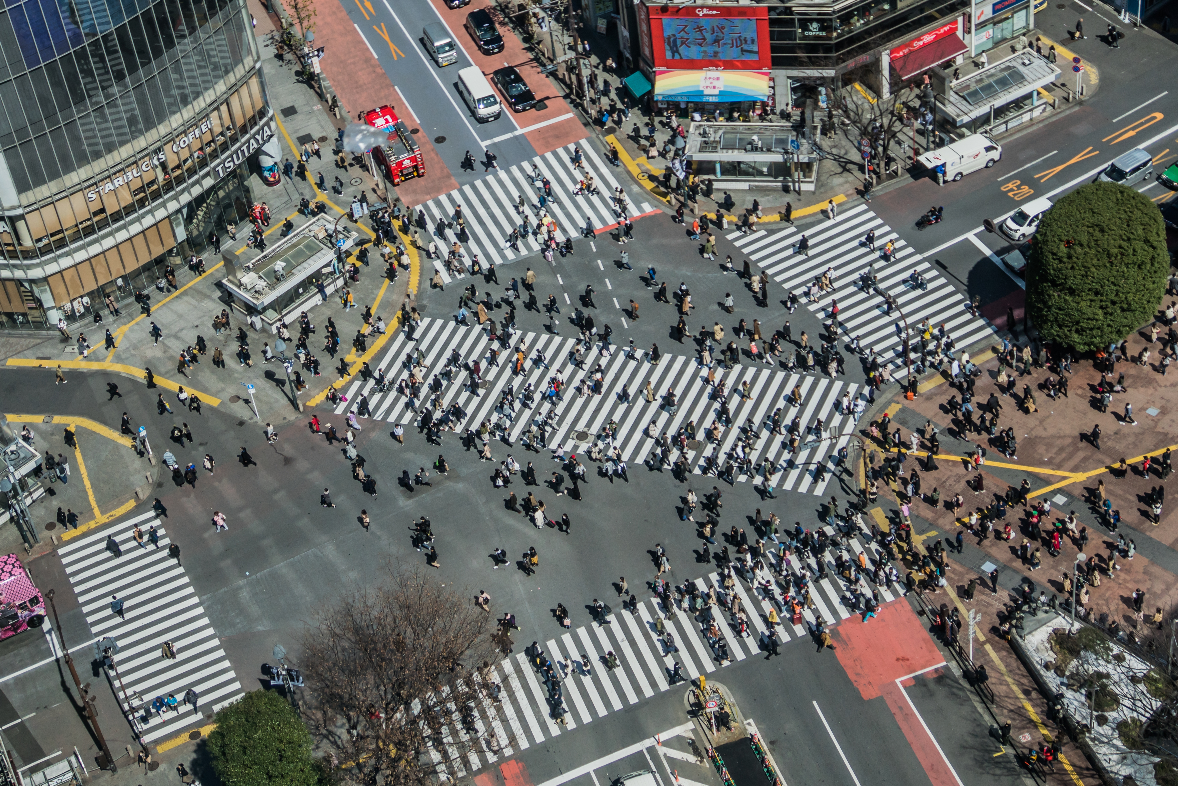 Image result for shibuya crossing