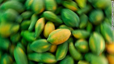 Salmonella cases in MA linked to fresh papayas from Mexico — CDC